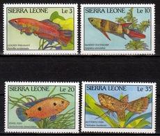 Sierra Leone MiNr. 1081/84 ** Fische - Sierra Leone (1961-...)