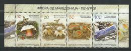 Macedonia 2013.Mushrooms,CHAMPIGNONS. Butterflies, Papillons.full Seriall.MNH - Macedonia
