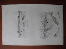 Réunion : Deux Documents De 1834  Par Sainson «St Denis Ile Bourbon» Et «Débarcadère De St Denis». - Documenti Storici