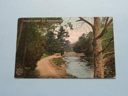 Driveway In JACKSON Park ( The Roy Studio - 600,095 ) Anno 19?7 ( Zie Foto Voor Details ) ! - Peterborough