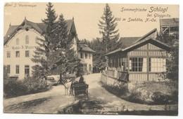 SCHLAGL Bei GLOGGNITZ - AUSTRIA, HOTEL WESTERMAYER, Year 1916 - Otros