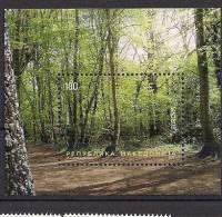 2011  Macedonia  Makedonien Mi. Bl. 23  **MNH  Europa: Der Wald. - 2011
