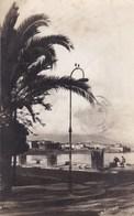 1 Carte De Corse CARTE PHOTO D'AJACCIO De A.TOMASI Et 3 Autres Cartes Offertes Avec   ( Lot 326 ) - Ajaccio