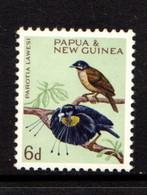 PAPUA  NEW  GUINEA    1964    Various  Designs    6d  Pale  Green    MNH - Papua New Guinea