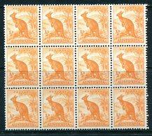 Australia 1948-56 Definitives - No. Wmk. - ½d Kangaroo Block Of 12 MNH (SG 228) - Mint Stamps
