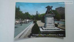 D166904  Castiglion Fiorentino - Toscana - Monumento Ai Caduti 1960's - Italia