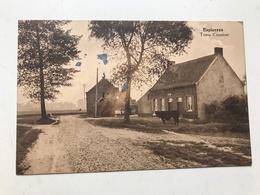 Carte Postale Ancienne Espierres Trieu Cousine - Espierres-Helchin - Spiere-Helkijn