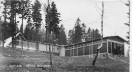 AK 0305  Pohorje - Hotel Bellevue Um 1965 - Slowenien