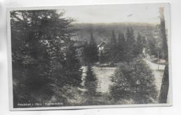 AK 0304  Alexisbad Im Harz - Klostermühle / Verlag Greve Um 1931 - Harzgerode
