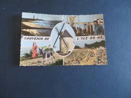 10 Cartes De L' ILE DE RE ,(assimillées Photos),dont 1 Moulin (( Lot 329 )) - Ile De Ré
