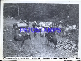 118423 ARGENTINA USHUAIA TIERRA DEL FUEGO AUTOMOBILE CAR AUTO & HORSE AÑO 1944 11.5 X 8.5 CM PHOTO NO POSTAL POSTCARD - Photographie
