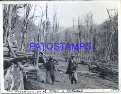 118427 ARGENTINA USHUAIA TIERRA DEL FUEGO COSTUMES MAN'S FOREST 12 X 9 CM PHOTO NO POSTAL POSTCARD - Fotografie