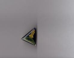 Pin's Espace / Space Shuffle NASA (époxy) Hauteur: 2,2 Cm - Espace