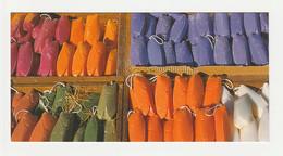 CIGALE SAVONS PROVENCE Carte Postale N° 19 SUD DE LA FRANCE - Animaux & Faune
