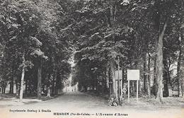 HESDIN - ( 62 ) - L'avenue D'arras - Hesdin