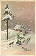 """Cartolina """"Buon Natale"""", Paesaggio Invernale E Uccellini (S24) - Altri"""
