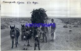 118481 ARGENTINA RIO NEGRO COSTUMES TRANSPORTE TIPICO CART A DONKEY 16.5 X 10 CM PHOTO NO POSTAL POSTCARD - Fotografie