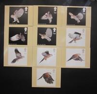 2003 BIRDS OF PREY STAMPS P.H.Q. CARDS UNUSED, ISSUE No. 249 - 1952-.... (Elizabeth II)