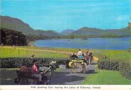 Irlande > Ireland - KERRY Killarnay Irish Jaunting Cars Touring The Lakes Of KILLARNEY  *PRIX FIXE - Kerry