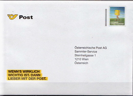 Postal History Cover: Austria Postal Stationery Cover Used By Austrian Post - Post