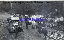 118508 ARGENTINA TIERRA DEL FUEGO USHUAIA PREPARANDO EL REGRESO CAR & HORSE AÑO 1944 16.5 X 10 CM PHOTO NO POSTCARD - Fotografie