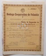 Bodega Cooperativa De Felanitx. - Aandelen