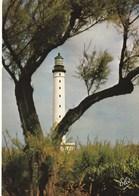 Carte Postale Des Années 70-80 - Biarritz - Le Phare De Biarritz - Barche