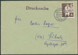 BRD Drucksache Mit Mi.-Nr.198 Als EF (MICHEL € 45,00) 1954, Feinst - Storia Postale