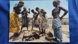 CPM AFRIQUE EN COULEURS PUITS WELLS FEMMES AUX SEINS NUS  BANGUI REPUBLIQUE CENTRAFRICAINE PHOTO LAUBIER - Centrafricaine (République)