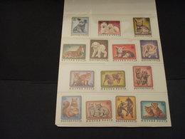 UNGHERIA -  1974/6 ANIMALI GIOVANI 7 +7 VALORI  - NUOVI(++) - Ungheria