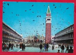 CARTOLINA VG ITALIA - VENEZIA - Piazza San Marco - 10 X 15 - 1981 - Venezia