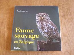 FAUNE SAUVAGE DE BELGIQUE Animaux Oiseaux Mammifères Cerf Sanglier Rapace Renard Hiboux Photographies Photos - Animaux