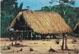 Dear Doctor Biomarine Ou Assimilée - Type Amora - Surinam Suriname - Werbepostkarten