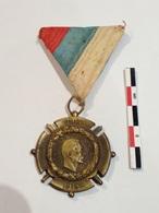 Serbie Médaille Militaire Campagne D'Orient 14-18 - Medaglie