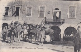 Cpa 15 BEYROUTH CHAMEAUX DE TRANSPORT Carte Vierge - Libye