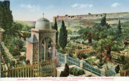 PALESTINE - Israel - Jerusalem - Garden Of Gethsemane - Good Animation Etc - Palestine