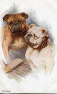 UNITED KINGDOM - BULLDOGS - Dogs Artcard - Hunde