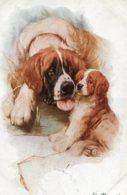 UNITED KINGDOM - ST BERNARDS - Dogs Artcard - Cani