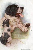 UNITED KINGDOM - NEWFOUNDLANDS - Dogs Artcard - Hunde