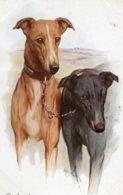 UNITED KINGDOM - GREYHOUNDS - Dogs Artcard - Hunde