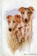 UNITED KINGDOM - RUSSIAN WOLFHOUNDS - Dogs Artcard - Cani