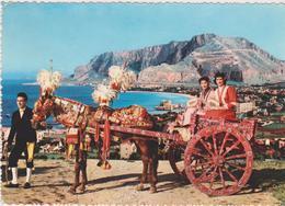 Cartoline Folklore-carretto Siciliano - Costumi