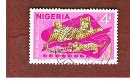NIGERIA  -  SG 177  -  1966  ANIMALS: LEOPARD   -  USED * - Nigeria (1961-...)