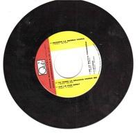 FORMATO PICCOLO QUIZ EDIZIONI MUSICALI - Disco & Pop