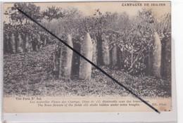 Campagne 1914-1916; Les Nouvelles Fleurs Des Champs,obus De 155 Dissimulés Sous Les Branchages - Guerra 1914-18