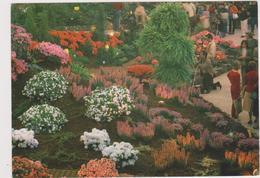 Euroflora 1986-genova - Esposizioni