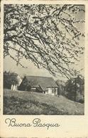 """Cartolina """"Buona Pasqua"""", Paesaggio Rurale In Primavera, Thematic Stamp 8 Lire 1^ Cent. Repubbl. Italiana 1949 (S07) - Pasqua"""