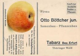Landwirtschaft Tabarz (O5808) Samenbau Pflanzenbau Otto Böttcher  Werbe AK I-II Paysans - Ausstellungen