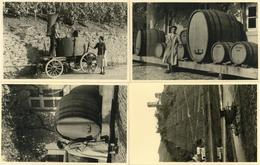 Wein Rheinland-Pfalz Weinlese Fässer Weinberg Lot Mit 4 Foto-Karten I-II Vigne - Ausstellungen