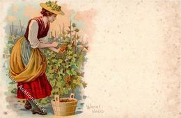 Wein Weinlese Waadt Lithographie I-II (fleckig) Vigne - Ausstellungen